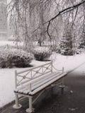 Der erste Schnee lizenzfreie stockfotografie