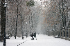 Der erste Schnee der Jahreszeit Stockfotografie