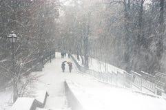 Der erste Schnee der Jahreszeit Lizenzfreie Stockbilder