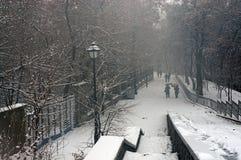 Der erste Schnee der Jahreszeit Stockbild