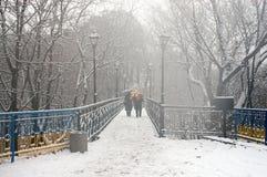 Der erste Schnee der Jahreszeit Lizenzfreies Stockfoto