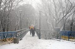 Der erste Schnee der Jahreszeit Lizenzfreie Stockfotos