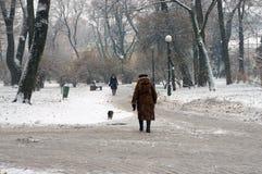 Der erste Schnee der Jahreszeit Lizenzfreies Stockbild