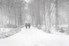 Der erste Schnee der Jahreszeit Lizenzfreie Stockfotografie