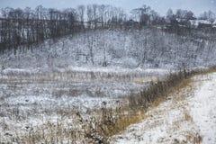 Der erste Schnee hat den Boden umfasst Stockbild