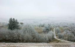 Der erste Schnee im Herbstdorf Stockbilder