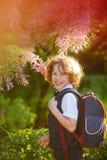 Der erste Sortierer, der über schön blühenden Busch steht Stockbilder