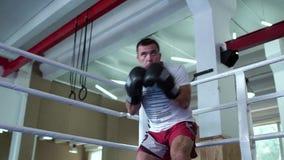 Der erwachsene Mann, der seins ausbildet, brennt Technik am Boxring durch stock video footage