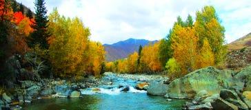 Der erzisi Fluss Lizenzfreie Stockfotos