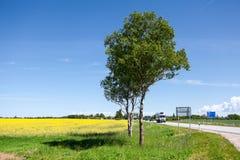 Der europäische Weg E20 lässt ungefähr Estland-Land laufen Nationale Hauptstraße Tallinn-Narva an der Sommersaison Stockfotos