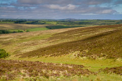 Der Exmoor Nationalpark in Devon, England Stockbilder
