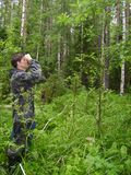 Der Förster misst die Bäume im Wald lizenzfreie stockfotos