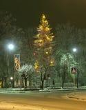 Der feierliche (verzierte) Pelzbaum. Stockbild