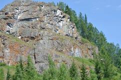 Der Felsen des roten und grauen Steins mit einem Kiefernwald an einem Sommertag stockfotos