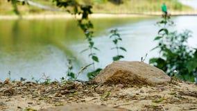 Der Felsen ist auf dem Flussufer so schön Lizenzfreies Stockbild
