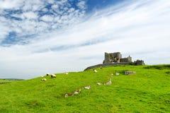 Der Felsen von Cashel, eine historische Stätte gelegen bei Cashel, Grafschaft Tipperary, Irland Lizenzfreie Stockbilder