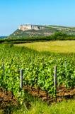 Der Felsen von Vergisson und von Weinyard, Burgunder, Frankreich Stockfotos