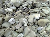 Der felsige Strand von Massalubrense stockfotos