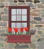 Der Fensterkasten Lizenzfreies Stockbild