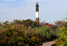 Der Feuer-Insel-Leuchtturm durch die Bürste stockfotografie