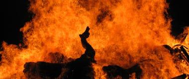 Der Feuerdrache Stockfoto