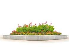 Der Flower-bed mit den roten und gelben Blumen Stockbilder