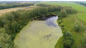 Der Flug des Brummens über dem Fluss Schöne kleine Insel Fotos von einer Höhe Stockfotografie