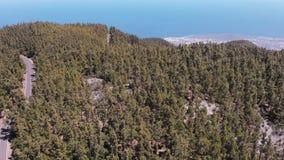 Der Flug des Brummens über dem Gebirgszug und des zapfentragenden immergrünen Waldes, der Ozean im Hintergrund Teneriffa stock video