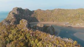 Der Flug des Brummens über den Klippen, übersieht glatt die kleine Bucht, die Gezeiten ist im Meer stock video
