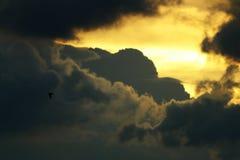 Der Flug des Vogels Stockbild
