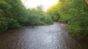 Der Fluss Lizenzfreies Stockfoto
