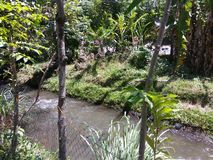 Der Fluss Lizenzfreies Stockbild