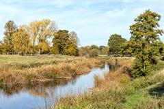 Der Fluss Avon, Warwickshire, England Stockfoto
