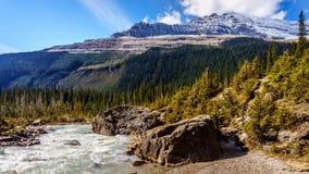 Der Fluss, der von Takakkaw fließt, fällt mit Michael Peak Lizenzfreie Stockbilder