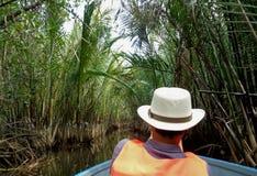 Der Fluss durch Mangroven-Wald in Thailand kreuzen lizenzfreie stockbilder
