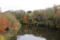 Der Fluss in Durham, Großbritannien stockbild