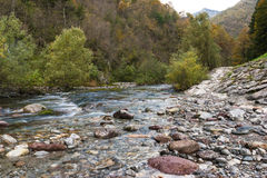 Der Fluss ein Nebenfluss durch die bunten Herbstberge Stockbilder