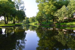 Der Fluss in einem Wald Stockfotos