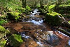 Der Fluss Ennig; am Naturreservat Pwll y Wrach stockfotos