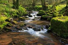Der Fluss Ennig; am Naturreservat Pwll y Wrach lizenzfreie stockfotos