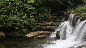 Der Fluss fließt unten von oben stock footage
