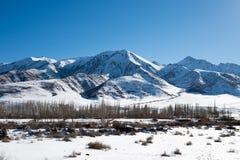 Der Fluss fließt unter den schneebedeckten Bergen von Kirgisistan in das sonnige wolkenlose Wetter des Winters stockbilder