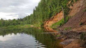 der Fluss Gauja in Lettland Stockbild