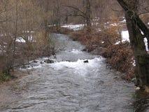 Der Fluss Grza in Serbien Stockfotografie