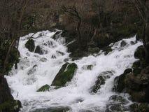 Der Fluss Grza in Serbien Lizenzfreies Stockbild