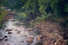 Der Fluss im Park Lizenzfreie Stockbilder
