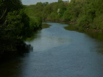 Der Fluss im Sommer mit grünen Ufern Stockbilder