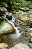 Der Fluss im Wald Lizenzfreie Stockfotografie