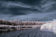 Der Fluss in Infrarot 1 Stockfotografie