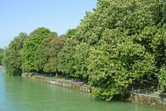 Der Fluss Isar in München im Bayern Stockfotografie